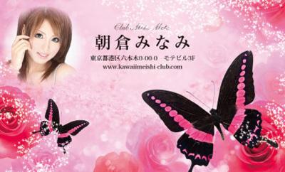 花と蝶・ピンク(写真あり)