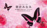 花と蝶・ピンク