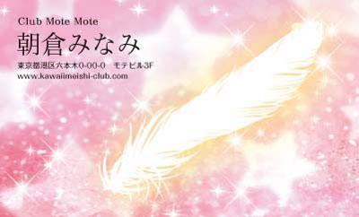 羽と星・ピンク