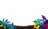 トロピカルフラワー・ブラック(写真あり) 裏面