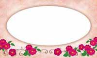 花フェアリーテイル・ラビット(写真あり) 裏面