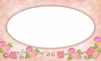 花フェアリーテイル・白雪姫(写真あり) 裏面