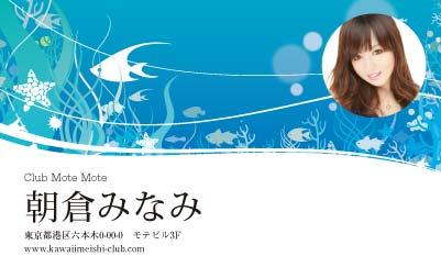 ロハスなイメージ・ブルー(写真あり)