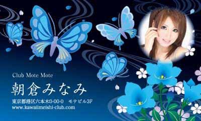 和風パピヨン・ブルー(写真あり)