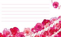 花とパール・ピンク 裏面