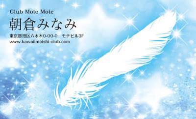 羽と星・ブルー