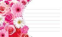 花いちめん・ピンク 裏面