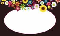 アゲハ花を連れて・黒(写真あり) 裏面