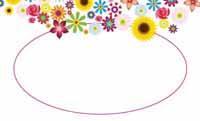 アゲハ花を連れて・白 裏面