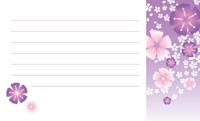 花と名前・撫子と花散し 裏面
