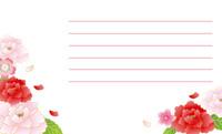 花をまとって・赤い牡丹(写真あり) 裏面